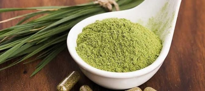 How To Use Kratom (Mitragyna Speciosa) Powder Effectively